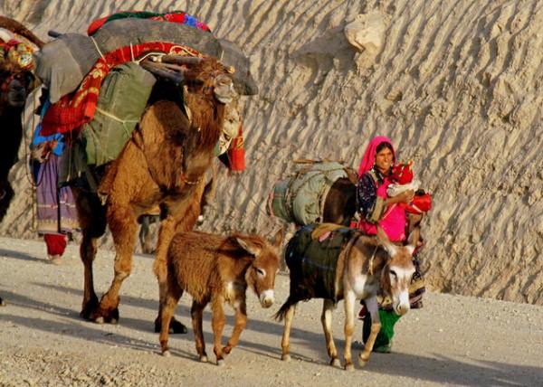 صور - ما هى العادات و التقاليد فى دولة افغانستان ؟