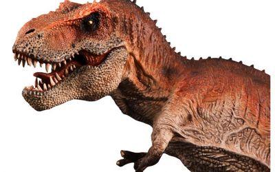 10 افضل انواع ديناصورات في العالم بالصور