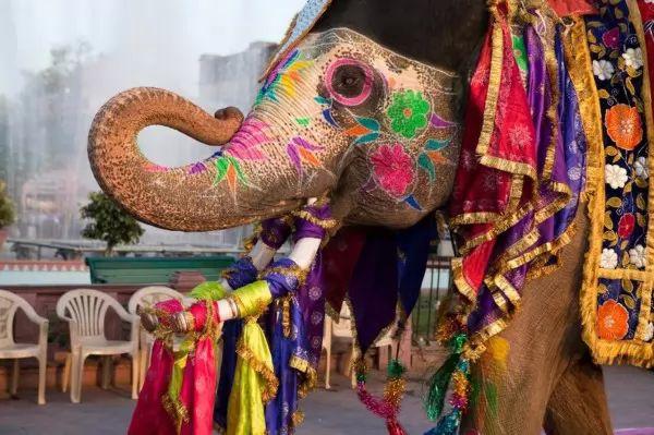 صور - ماهى العادات والتقاليد فى دولة الهند ؟