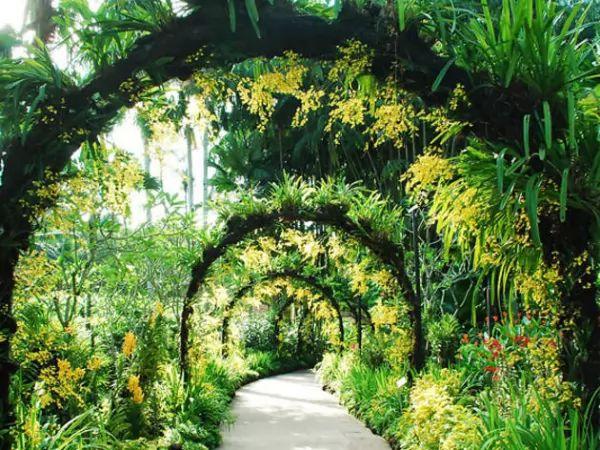 حدائق سنغافورة النباتية من اجمل اماكن سياحية في سنغافورة