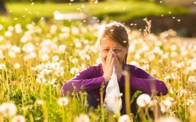 كيف تتجنب الإصابة بالحساسية خلال فصل الربيع ؟