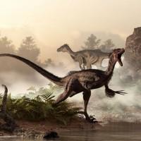 10 معلومات مدهشة عن ديناصور فيلوسيرابتور