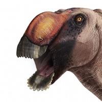 معلومات عن الديناصور ذي أنف النسر أغرب الديناصورات