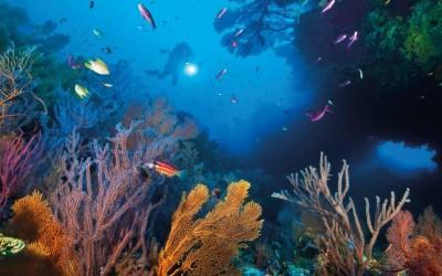 8 من أكبر المحميات الطبيعية في العالم بالصور